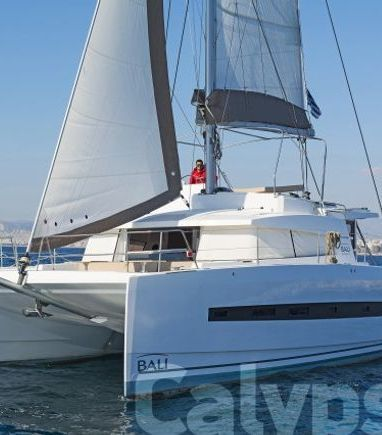 Catamaran Bali 4.3 (2016) (3)