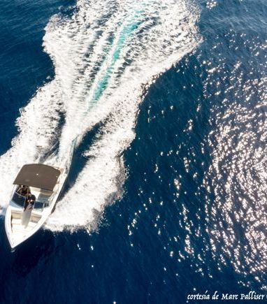 Motorboat Cobalt R3 · 2014 (refit 2019) (3)