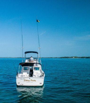 Motorboat Bertram 31 · 1976 (refit 2014) (3)