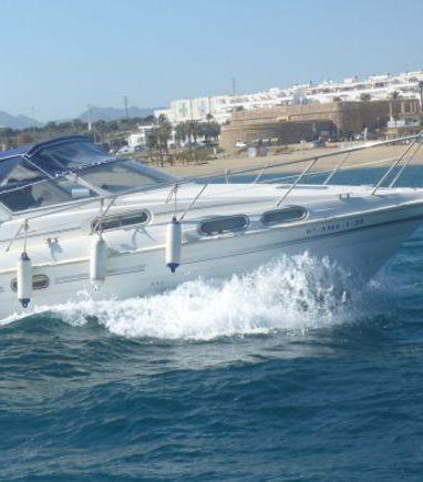 Motorboat Sealine 290 (2010) (3)