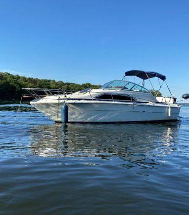 Houseboat Sea Ray 245 · 1984 (refit 2020) (3)