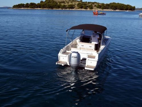 Speedboat Atlantic Marine 730 Sun Cruiser · 2015