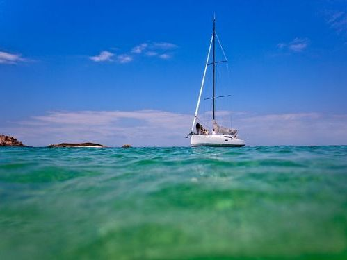 Barca a vela Pogo 12.50 · 2014