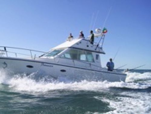 Motorboot Rodman 41 (2005)