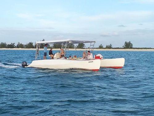 Catamaran Custom Built · 1990