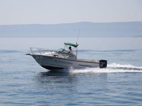 Sportboot Atlantic Marine 680 (2003)