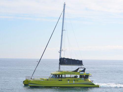 Catamaran Custom Built · 2018