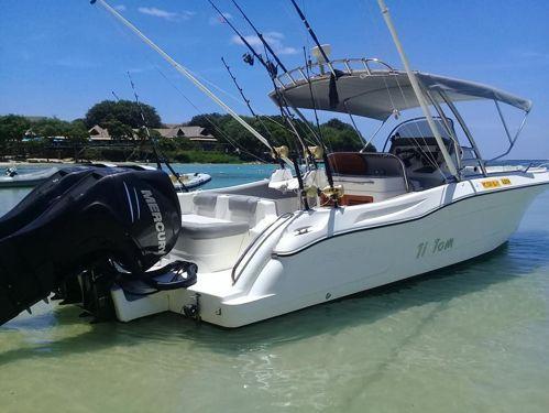 Imbarcazione a motore Legend 28 · 2014