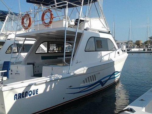 Motorboot Fairline Targa 48 (2011)