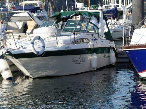 Barco a motor Sea Ray 290 · 1991
