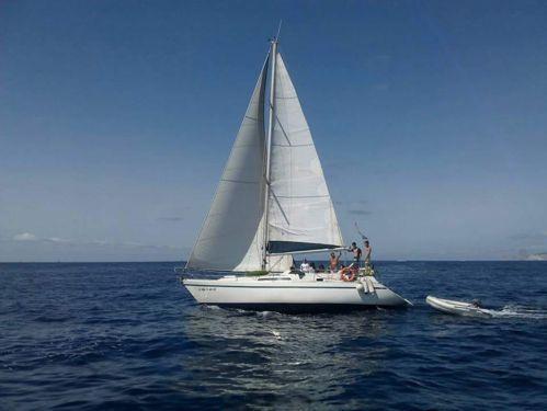 Barca a vela Bavaria Cruiser 37 (1986)