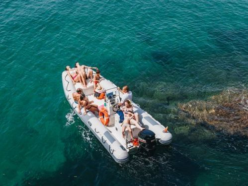 RIB Sea Life 6.0 · 2005
