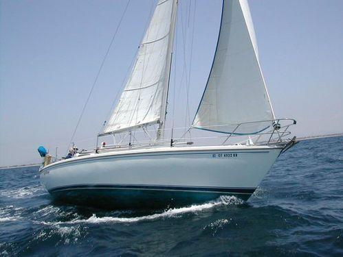 Segelboot Catalina 36 · 2010