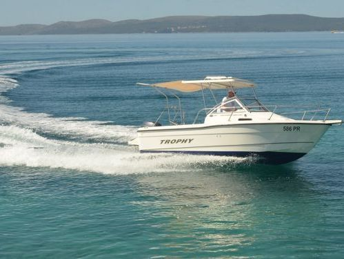 Imbarcazione a motore Bayliner Trophy 1802 · 2003