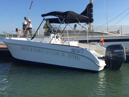 Speedboat Astec Day Cruiser 530 · 2017