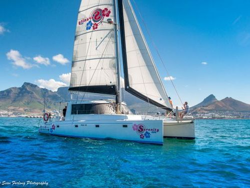 Katamaran Scape Yachts 39 · 2015