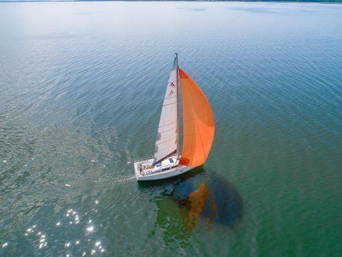 Segelboot Hanse 348 (2021)