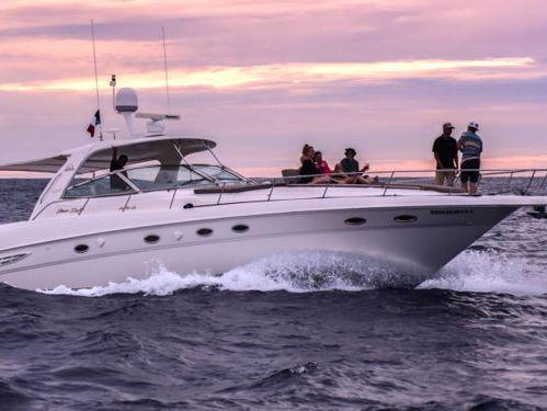 Imbarcazione a motore Sea Ray 460 · 2001