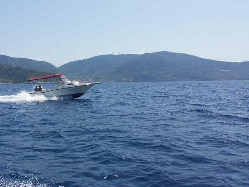 Sportboot Centurion Enzo 35 (2011)