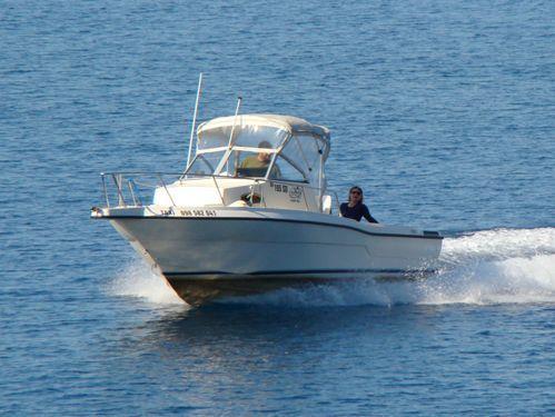 Sportboot Sea Master 2388 · 2001