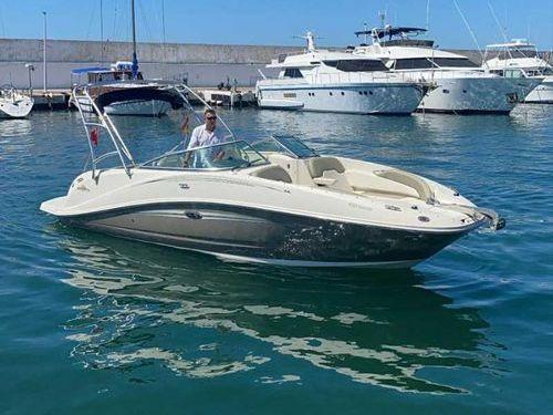 Motoscafo Sea Ray 260 Sundeck (2018)