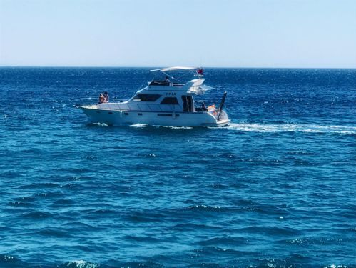 Imbarcazione a motore Fairline Targa 43 (1997)