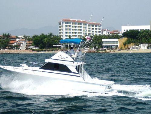 Motorboot Bertram 38 · 1990