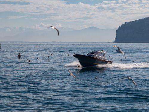 Speedboat Milano Aprea Faraglione 7.50 · 2001