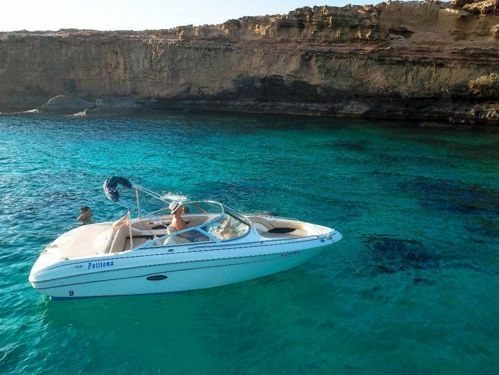 Motoscafo Sea Ray 190 Bowrider · 2000