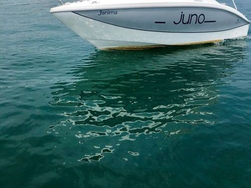 Speedboat Orizzonti Juno 590 · 2021