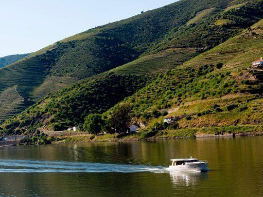 Barco a motor Greenline 40 - 2013 (reacondicionamiento 2020) (2)