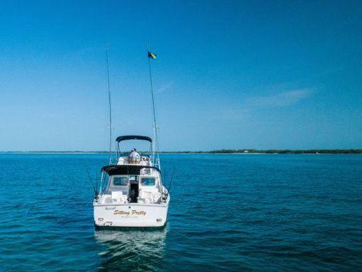 Motorboat Bertram 31 · 1976 (refit 2014) (0)