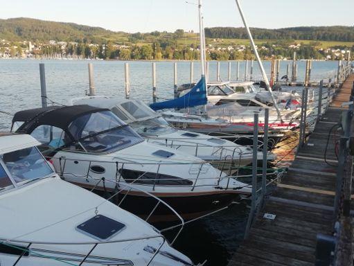 Motorboat Aqualine 750 · 2020 (2)