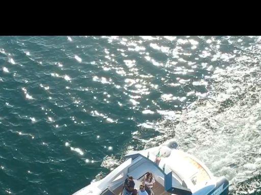 Speedboat Python C - 33 · 2020 (0)