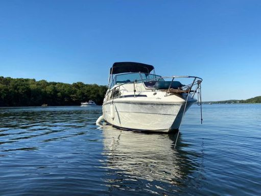 Houseboat Sea Ray 245 · 1984 (refit 2020) (1)