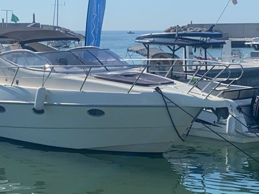 Motorboat Gobbi 315 · 2005 (2)