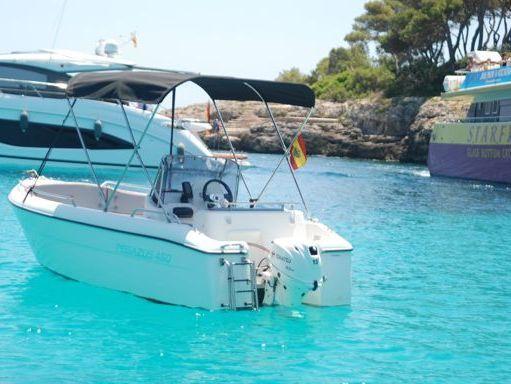Motorboat Pegazus 460 · 2020 (1)